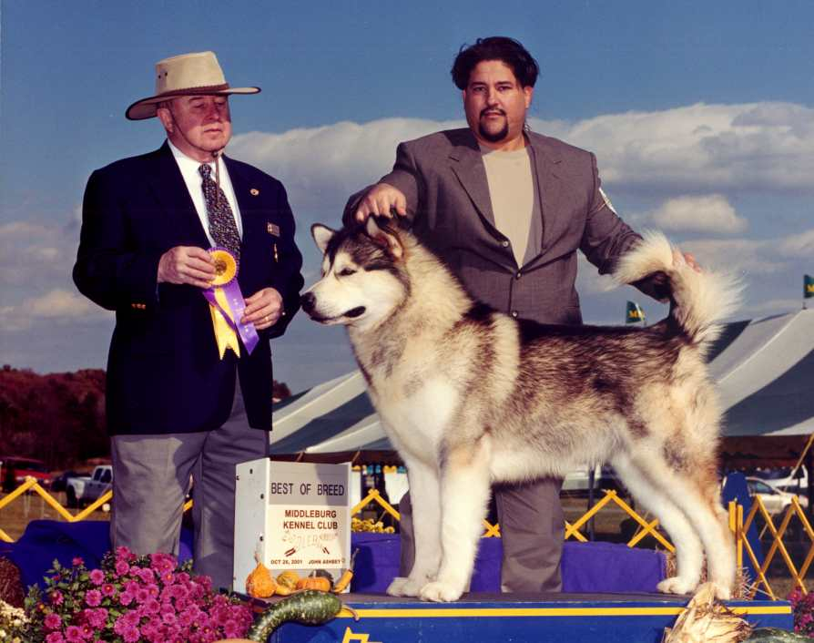 Hunter, Best of Breed, 10/26/01